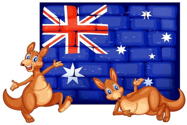Deux Kangourou Et Drapeau De L'australie Vecteur gratuit