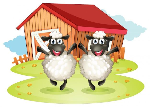 Deux Moutons Noirs Avec Une Grange Vecteur gratuit