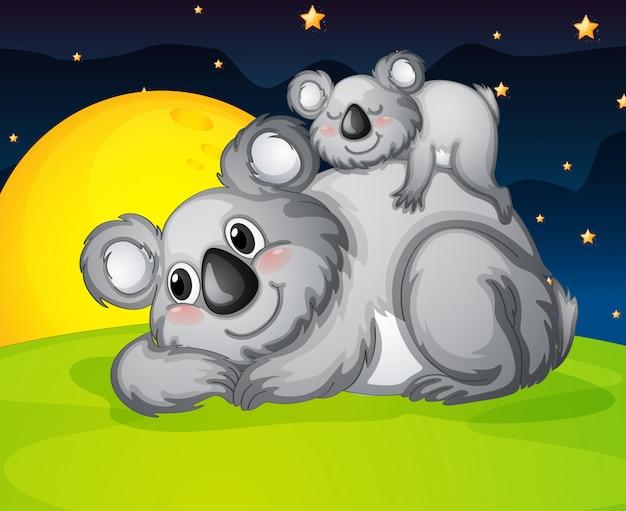 Deux ours au repos Vecteur Premium