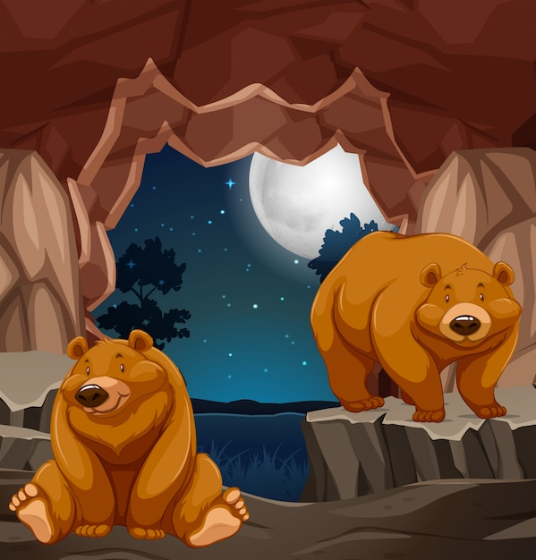 Deux ours bruns dans la grotte Vecteur gratuit