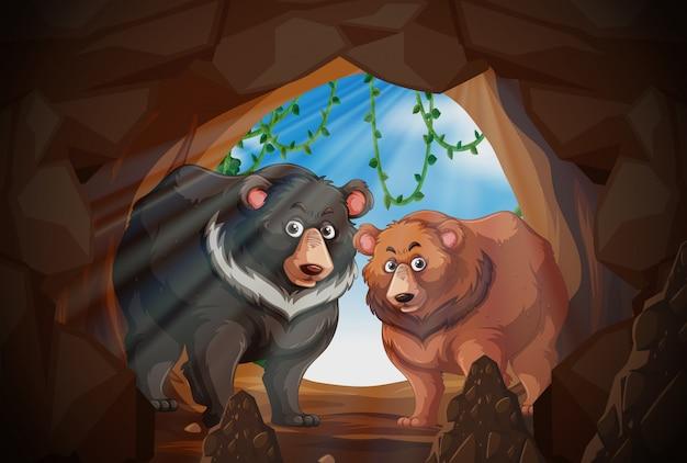 Deux ours dans une grotte Vecteur gratuit