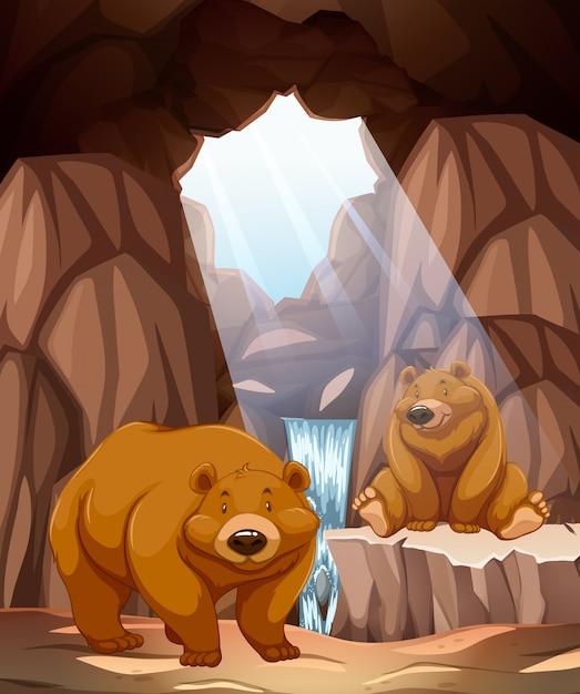 Deux ours heureux dans une grotte Vecteur Premium