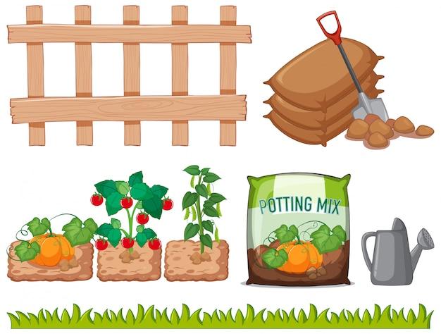 Différents Légumes Et Outils Dans Le Jardin Vecteur gratuit