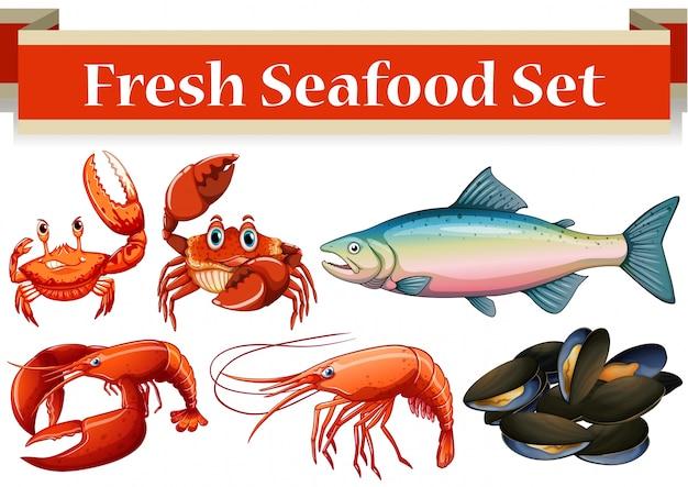Différents types d'illustration de fruits de mer frais Vecteur gratuit