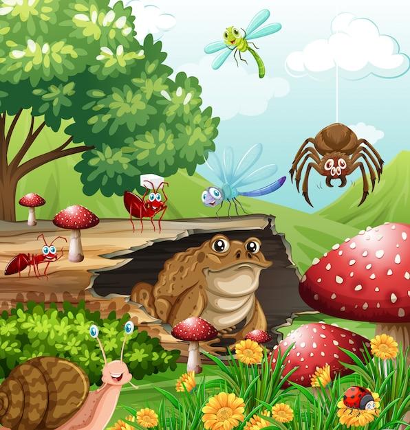 Différents Types D'insectes Dans Le Jardin Pendant La Journée Vecteur Premium