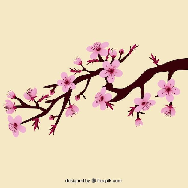 direction avec de belles fleurs de cerisier