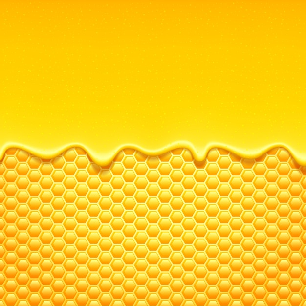 Doux gouttes de miel avec nid d'abeille. Vecteur Premium
