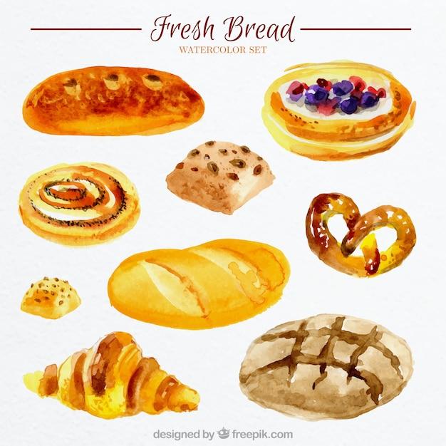 Du pain frais l 39 aquarelle t l charger des vecteurs for Congeler du pain frais