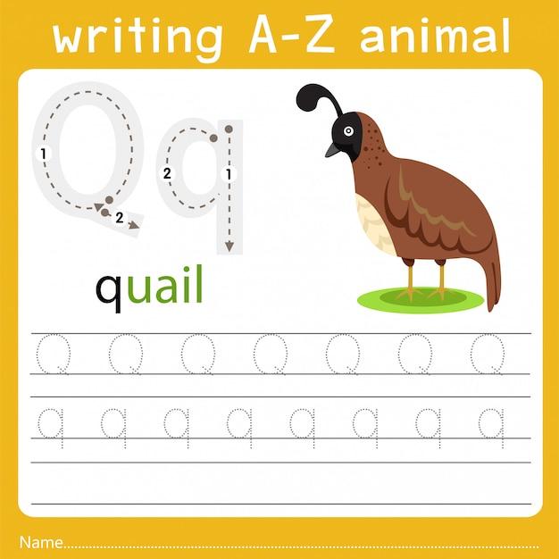 Écriture Z Animal Q Vecteur Premium