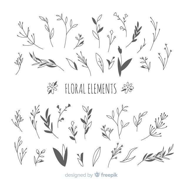 Éléments de décoration florale incolores dessinés à la main Vecteur gratuit