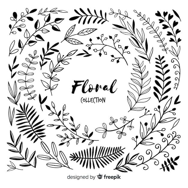 Éléments de décoration florale incolores Vecteur gratuit