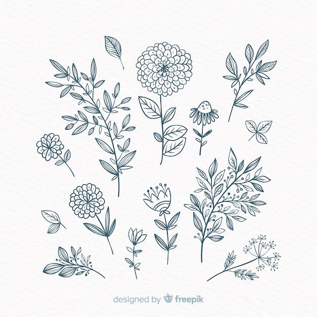 Éléments de décoration floraux dessinés à la main Vecteur gratuit