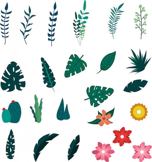 Éléments de fleurs et de feuilles d'été tropical Vecteur Premium