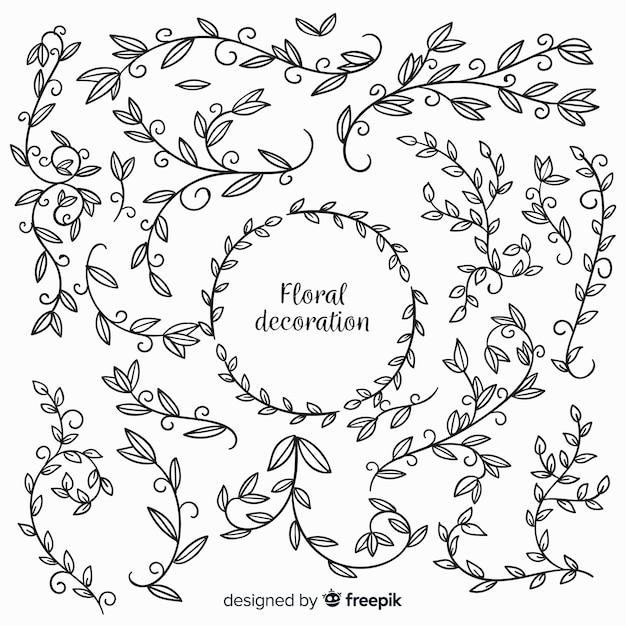 Éléments Floraux Incolores Dessinés à La Main Vecteur gratuit