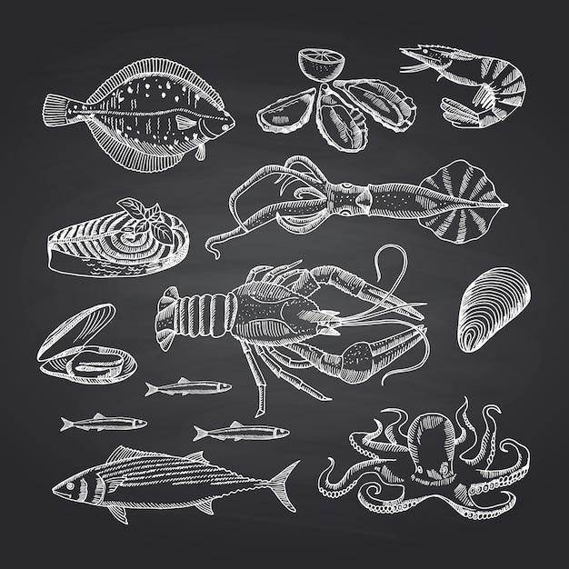 Éléments de fruits de mer dessinés à la main sur l'ensemble du tableau noir. illustration d'un croquis de fruits de mer, d'huîtres et de crevettes, de crabe et de homard Vecteur Premium