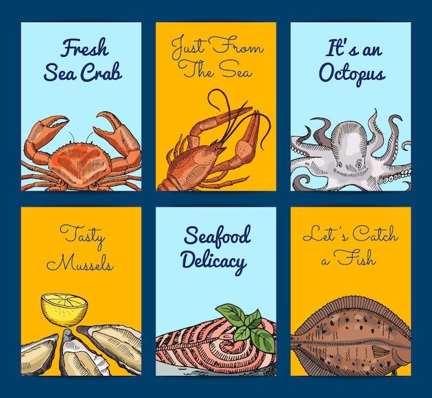 Éléments de fruits de mer dessinés à la main avec la place pour le texte Vecteur Premium