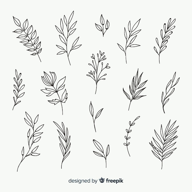 Éléments D'ornement Floral Dessinés à La Main Vecteur gratuit