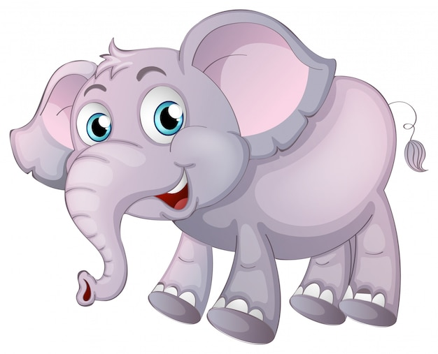 Éléphant sur blanc Vecteur gratuit