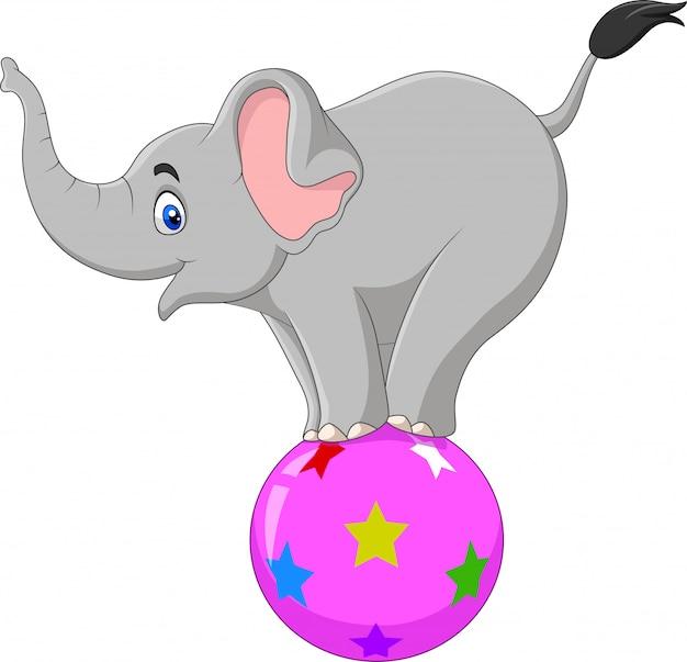 Elephant Du Cirque De Dessin Anime Se Tenant Sur Un Ballon