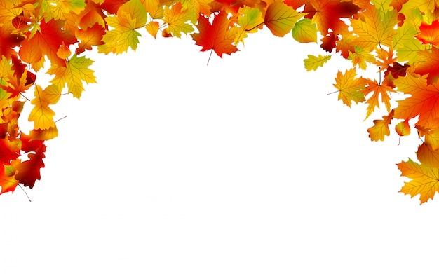 Encadrement De Feuilles Colorées D'automne. Vecteur Premium
