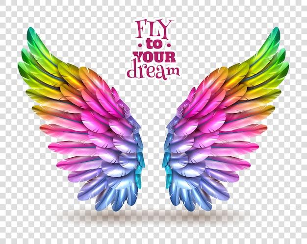Ensemble D'ailes Couleur Transparent Vecteur gratuit