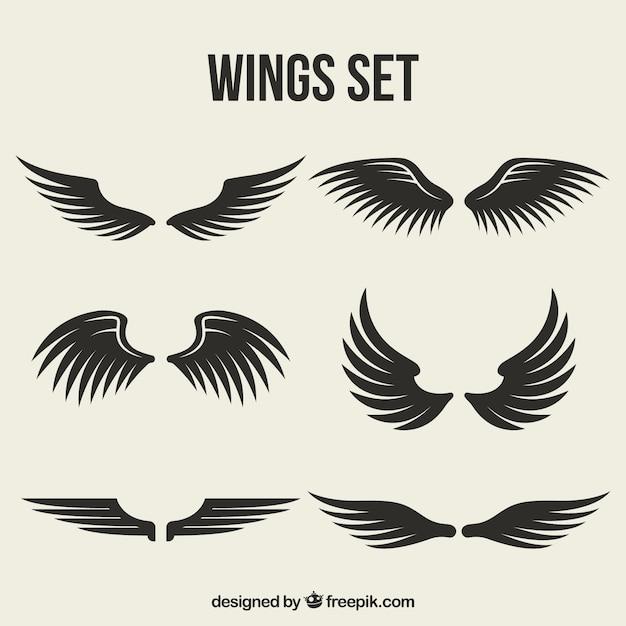 Ensemble D'ailes Avec Différentes Conceptions Vecteur gratuit