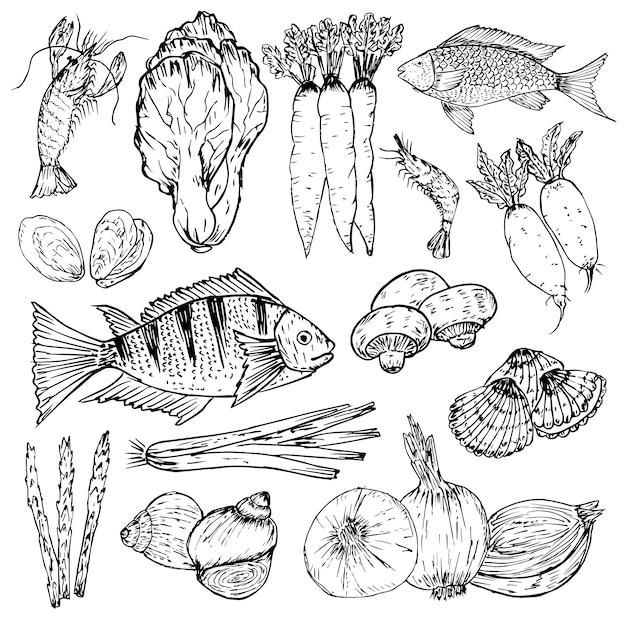 Ensemble d'aliments biologiques dessinés à la main. herbes, épices et fruits de mer biologiques. jeu de dessins d'aliments sains Vecteur Premium