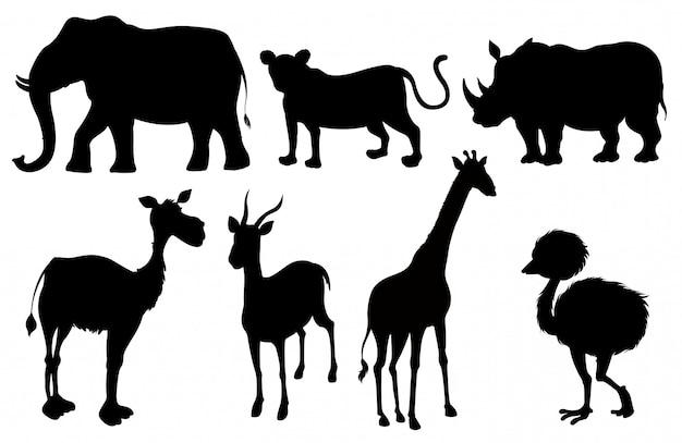Ensemble d'animaux exotiques de silhouette Vecteur gratuit