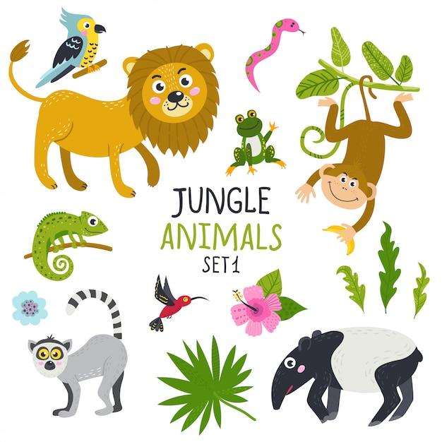 Ensemble d'animaux mignons de la jungle Vecteur Premium