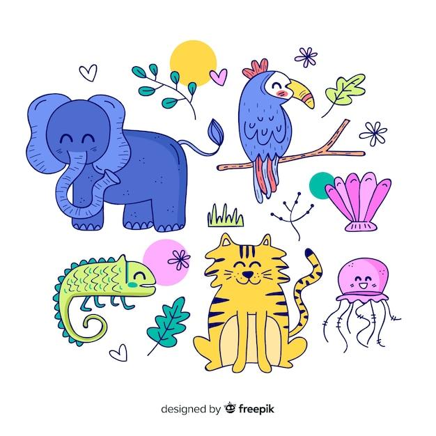 Ensemble d'animaux tropicaux: éléphant, toucan, caméléon, tigre, méduse Vecteur gratuit