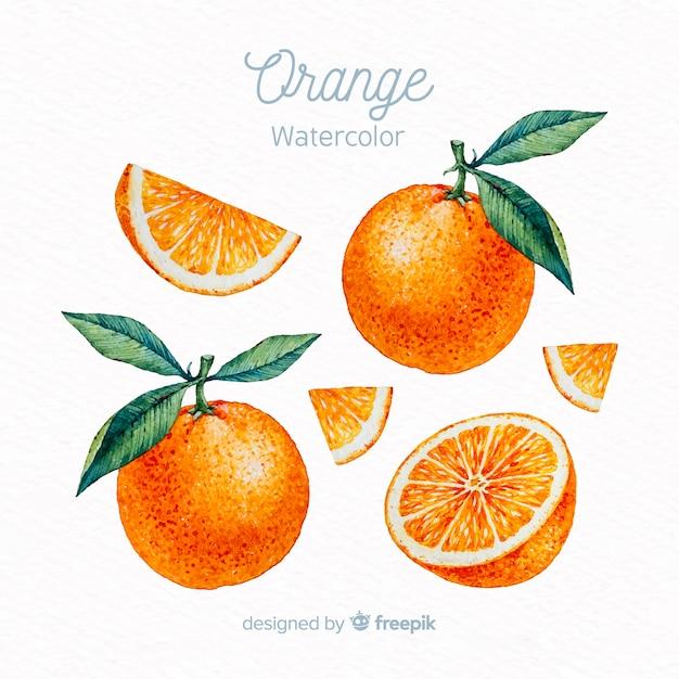 Ensemble aquarelle orange Vecteur gratuit
