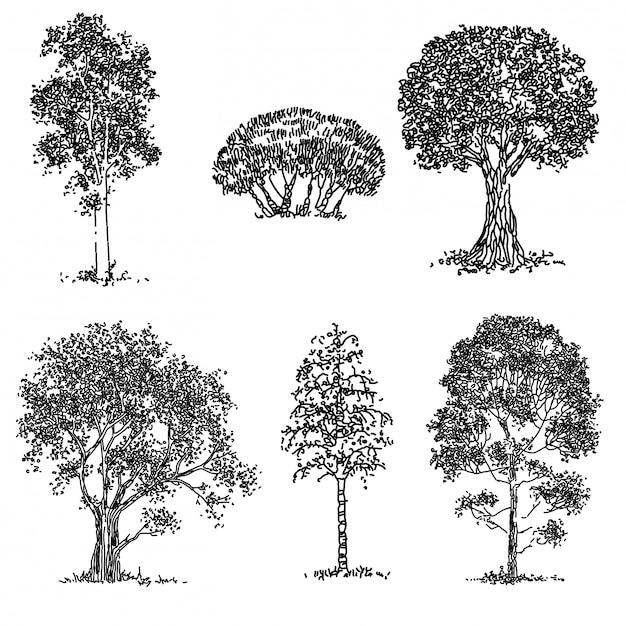 Ensemble d'arbres dessinés à la main Vecteur Premium
