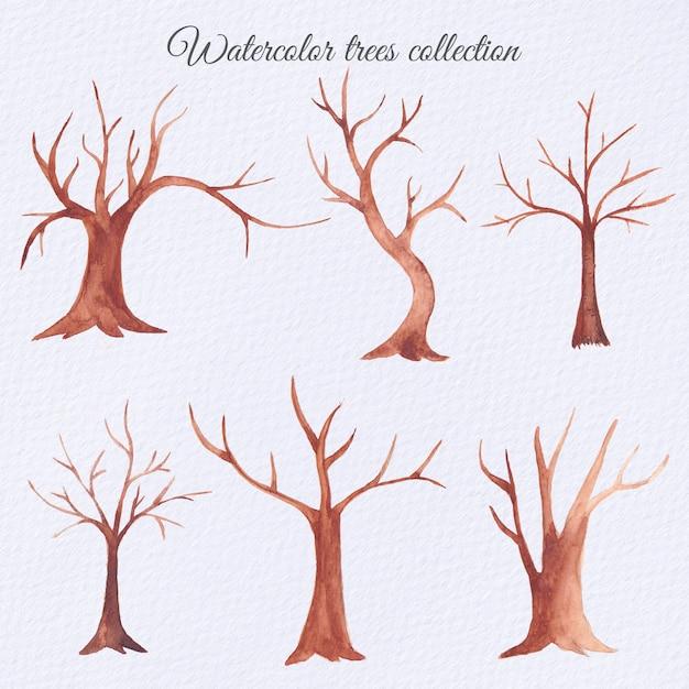 Ensemble d'arbres secs aquarelle Vecteur Premium