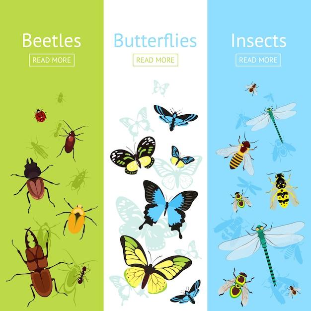 Ensemble de bannière d'insectes Vecteur Premium