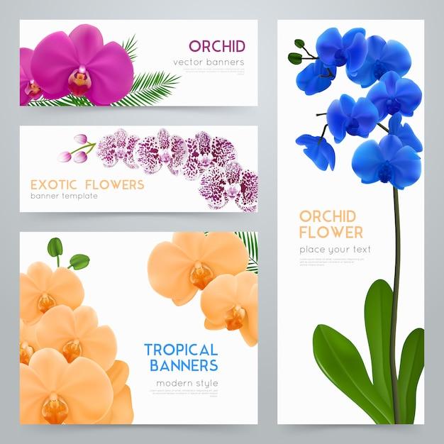 Ensemble de bannières réalistes blooming orchids Vecteur gratuit