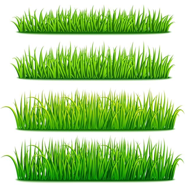Ensemble de bordures d'herbe verte fraîche Vecteur Premium