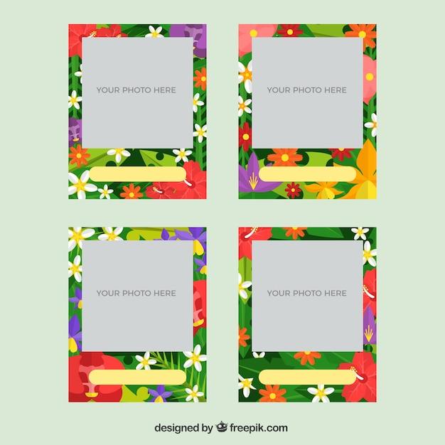 Ensemble De Cadres Avec Fleurs Tropicales Vecteur gratuit