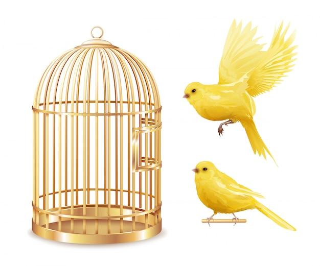 Ensemble de cage d'or des canaries Vecteur gratuit