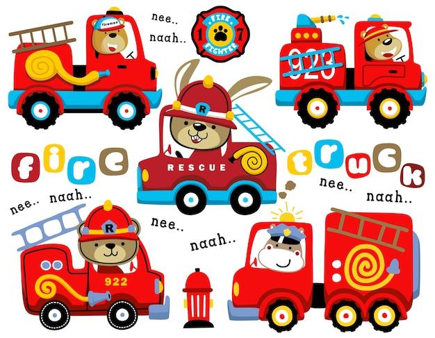 Ensemble De Camions De Pompiers Dessin Anime Avec Chauffeur Drole Vecteur Premium