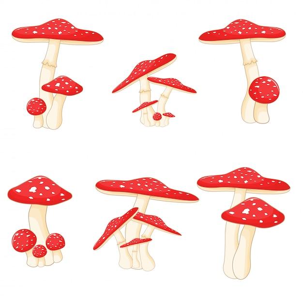 Ensemble de champignons Vecteur Premium