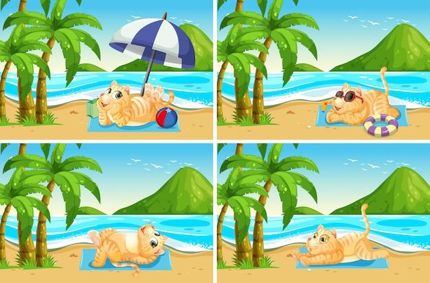 Ensemble de chat à la plage Vecteur gratuit