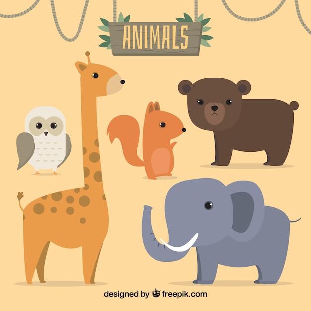Ensemble de cinq animaux sauvages Vecteur gratuit
