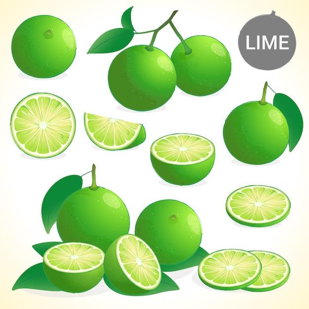 Ensemble de citron vert au format vectoriel de différents styles Vecteur Premium