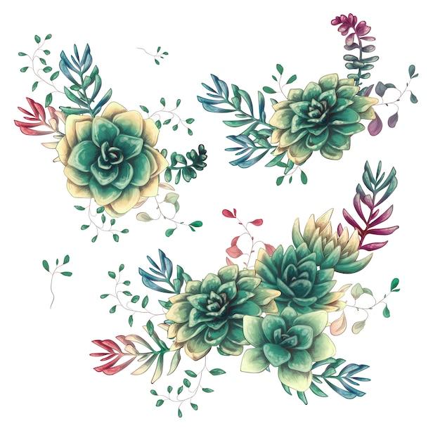 Ensemble de compositions florales de plantes succulentes à la main dessiner style. Vecteur Premium