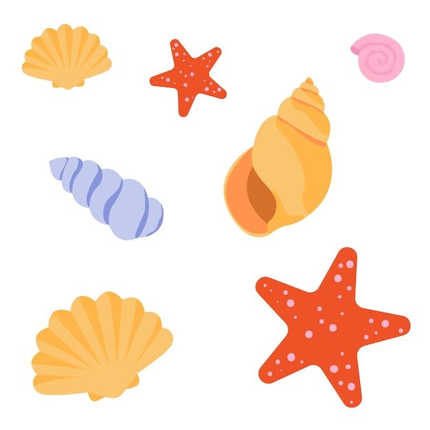 Ensemble de coquillages et étoiles de mer Vecteur Premium