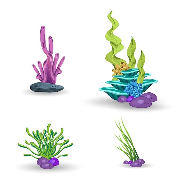 Un ensemble de coraux et d'algues Vecteur Premium