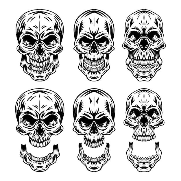 Ensemble de crâne humain rétro vintage et illustration isolée de mâchoire sur fond blanc. Vecteur Premium