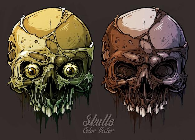 Ensemble de crânes humains colorés graphiques détaillés Vecteur Premium