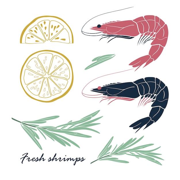 Ensemble de crevettes au citron et romarin Vecteur Premium