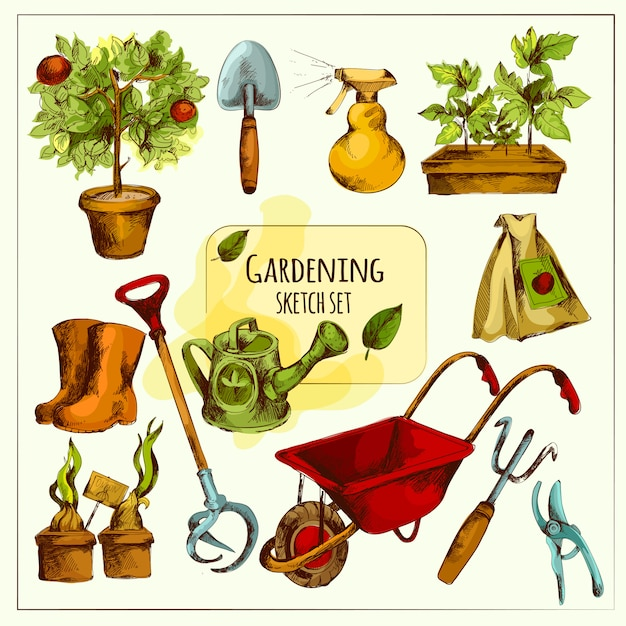 Ensemble de croquis de jardinage coloré Vecteur gratuit